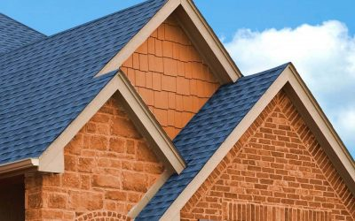 Roof Repair vs. Replacement