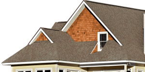 Shingle Roof House